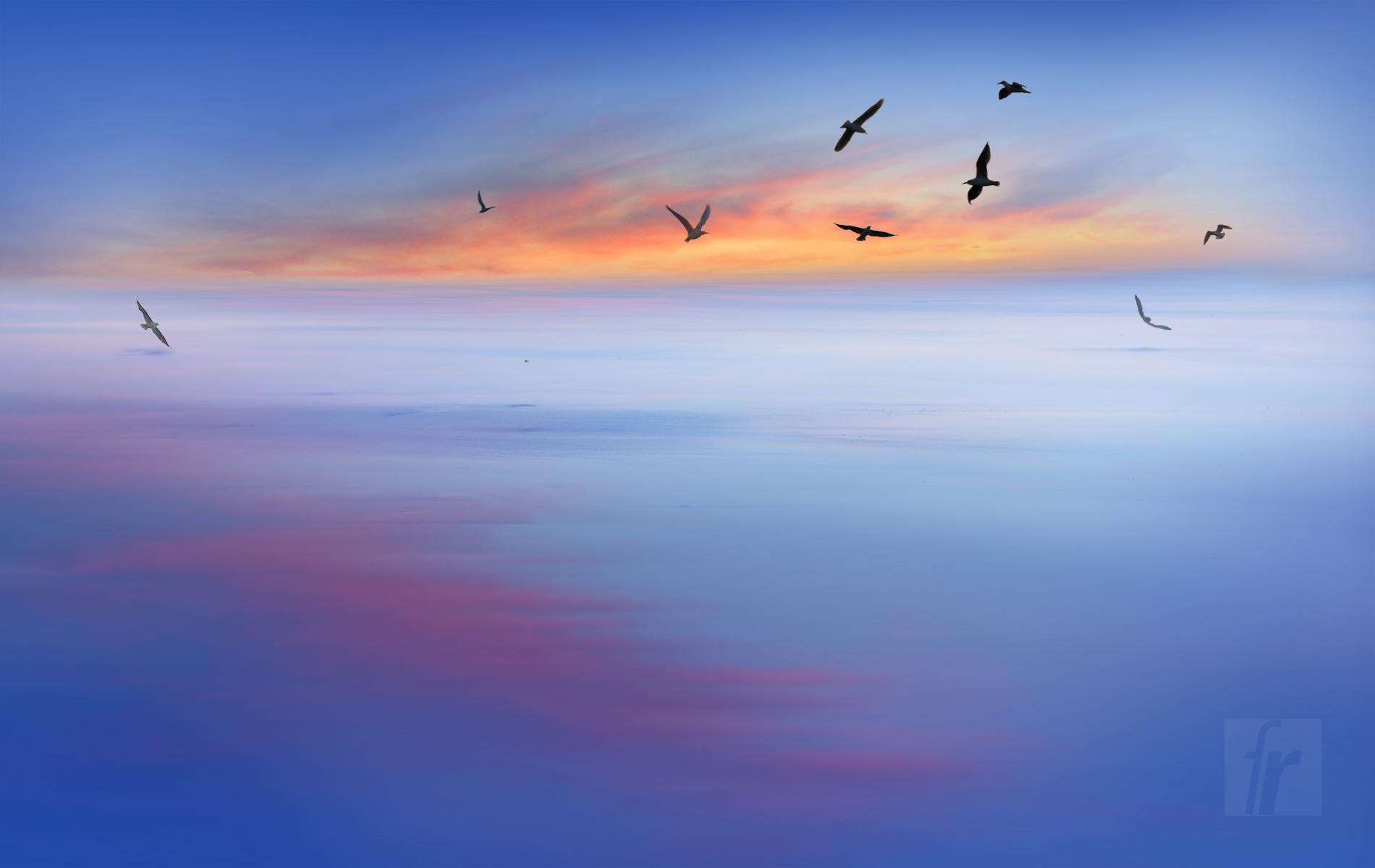 François Raimbaud - Blue Birds