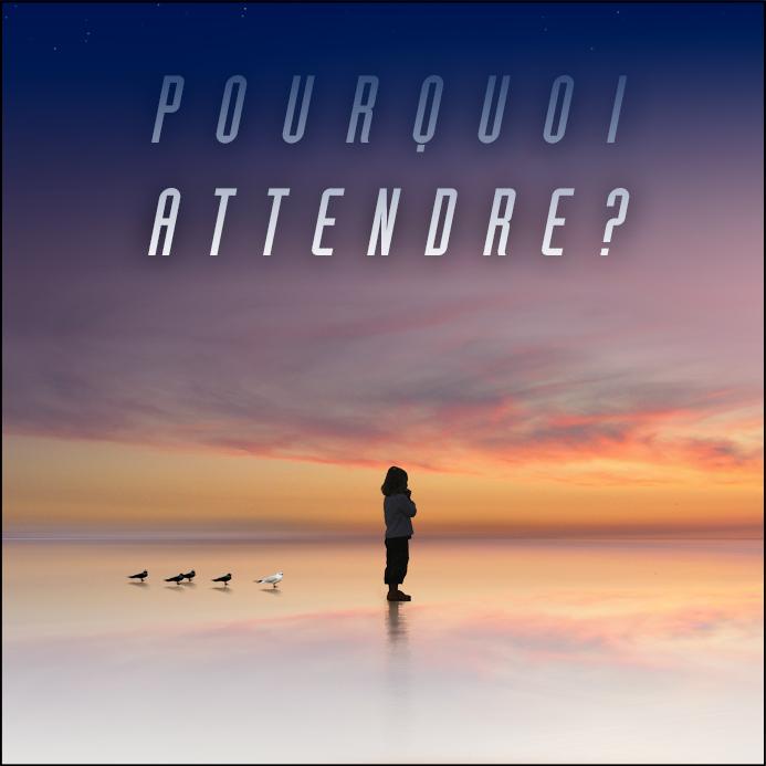 François Raimbaud - Pourquoi Attendre -2